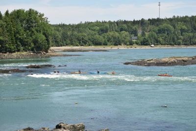 Kayakers at tidal falls